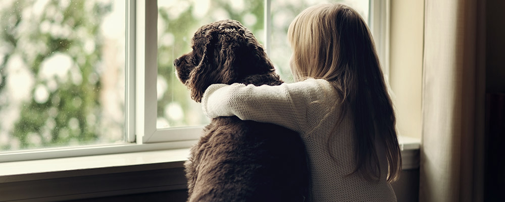 Tips to Prep for a Home with a Pet