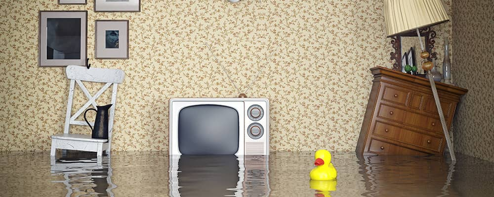 Flood Insurance 101: A Downpour of Useful Information