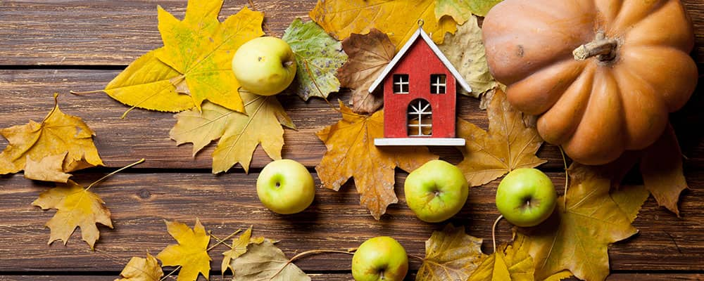 house ornament surrounded by fall things