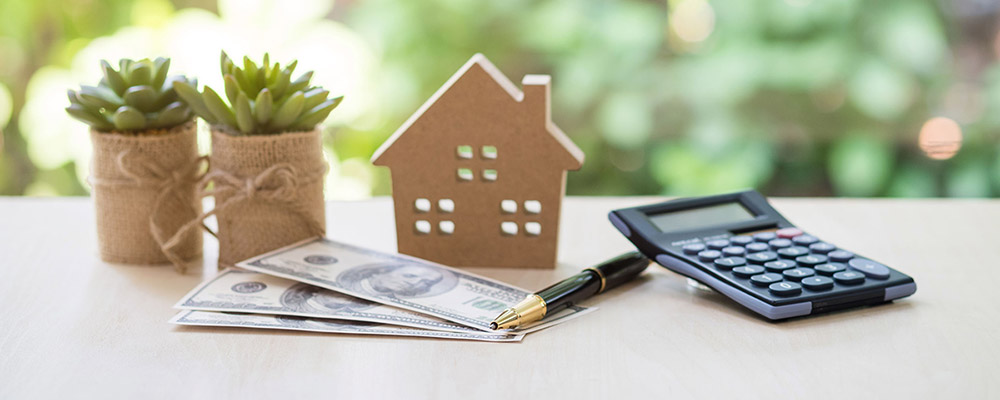 House plant money | Record Home Prices People Think They Can Buy